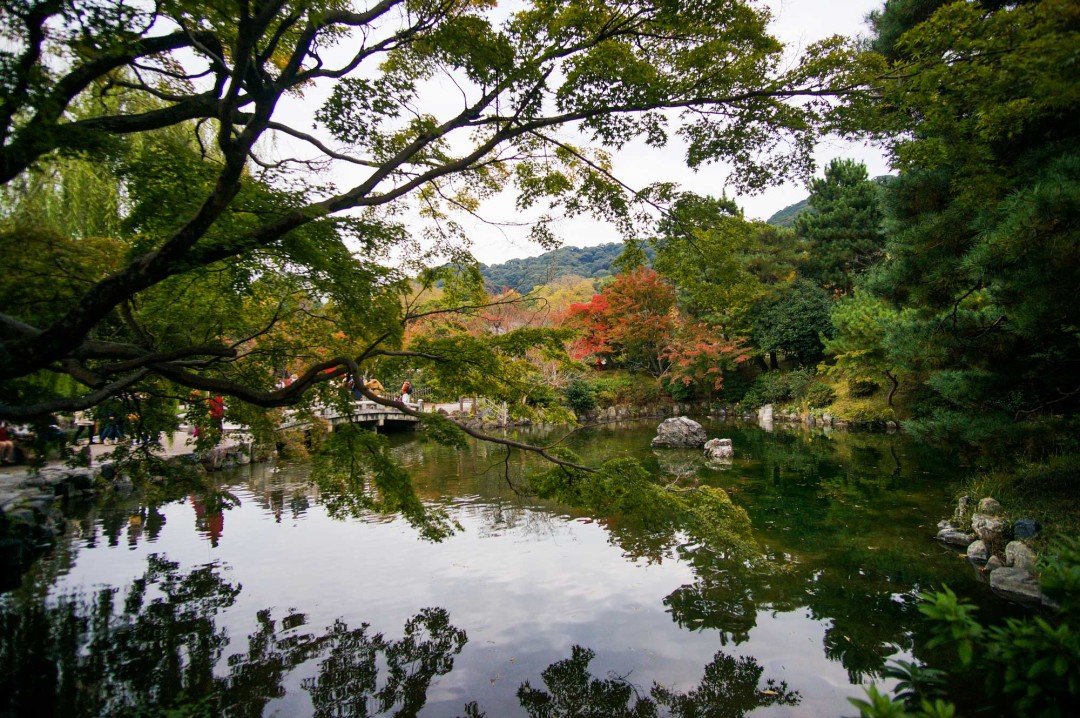 beautiful-pond-in-kyoto