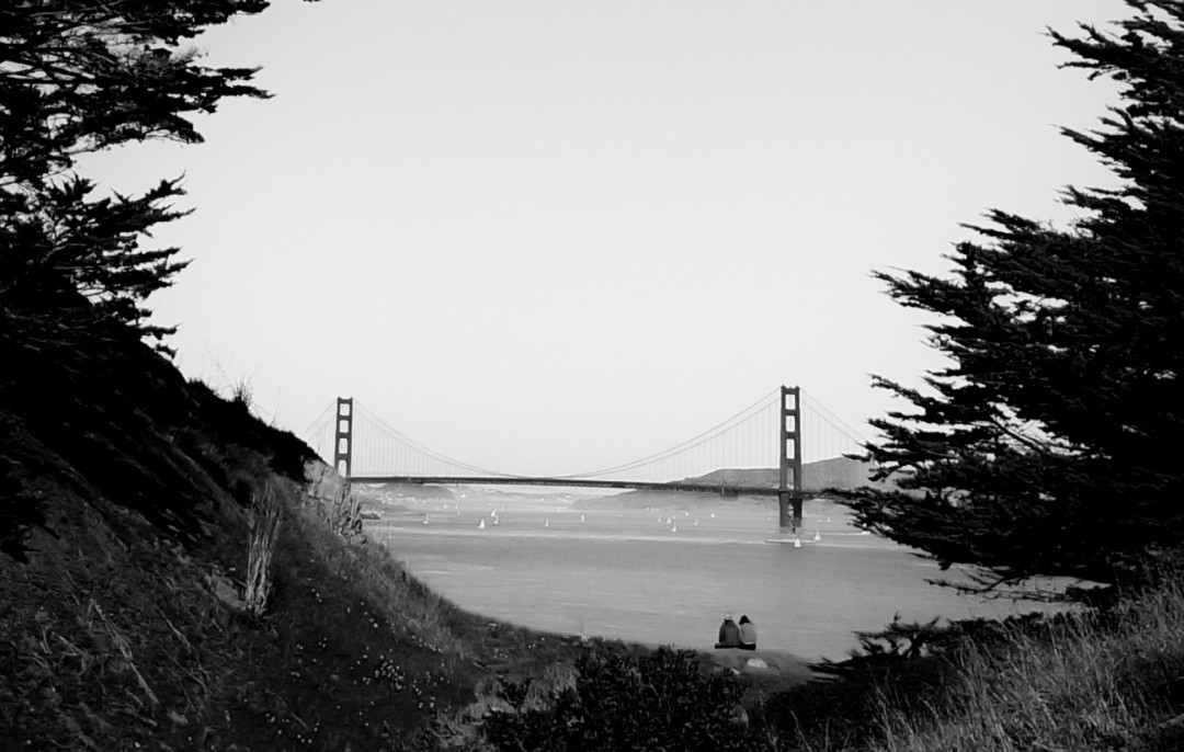 SF black and white